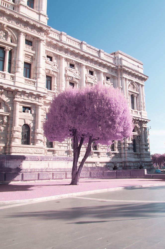 Rome in Infrared - 1 by Rácmolnár Milán