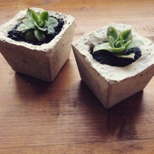 Industrial concrete small plant pot by Rustycity  - 1 by Rustycity