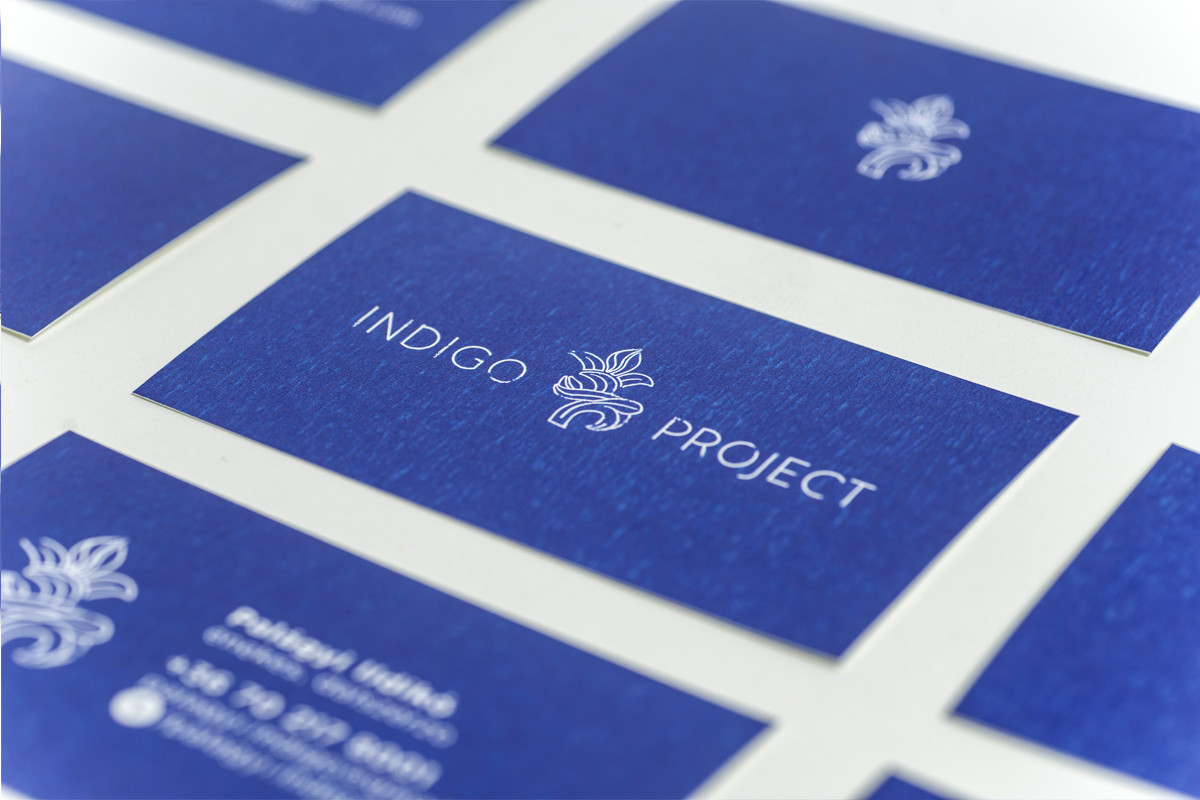 INDIGO PROJECT - 1 by VENI