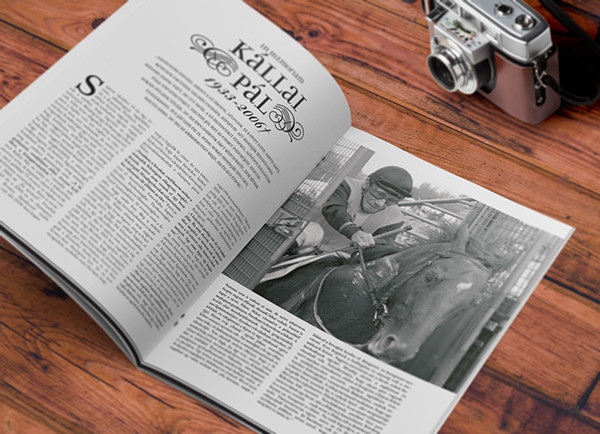 TURF Magazin lapterv / TURF Magazine design - 1 by Hédi vagyok