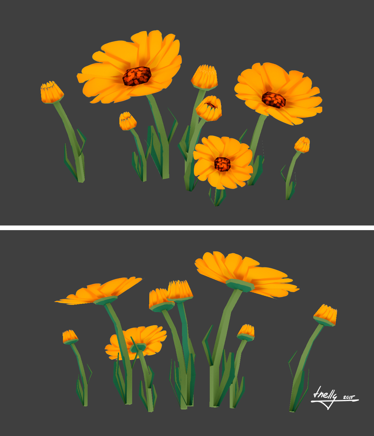 Marigolds - 1 by Tizedes Petronella