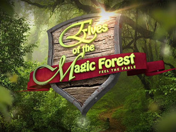 The Elves Of The Magic Forest